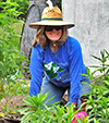 Wildlife Garden Volunteer