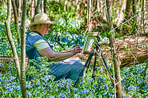 Artists in the Bluebells