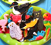 Identify the Cookies by Nancy Vehrs