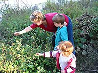 Families Explore Plants and Wildlife at Veteran's Park