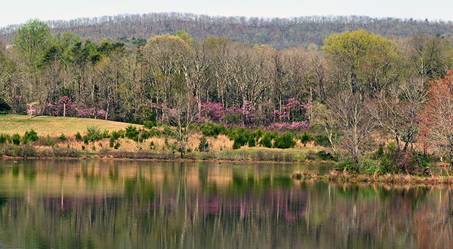 Silver Lake Park by Larry Meade